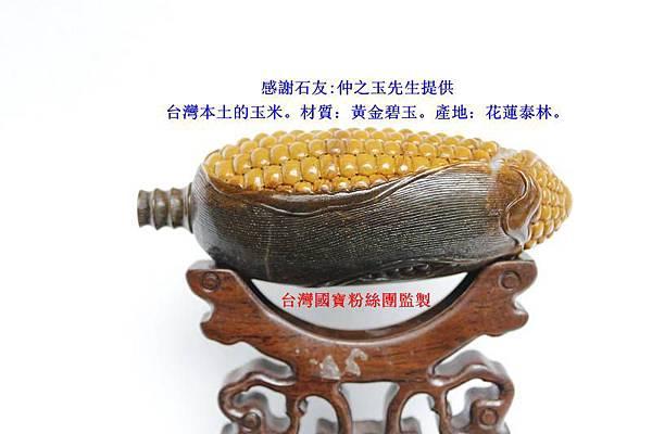 台灣本土的玉米。材質:黃金碧玉。產地:花蓮泰林。_副本