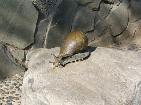 路邊的蝸牛銅像,還以為是真的勒@@