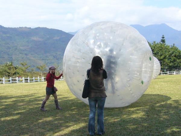 草地上滾球