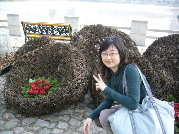 可愛的造型花
