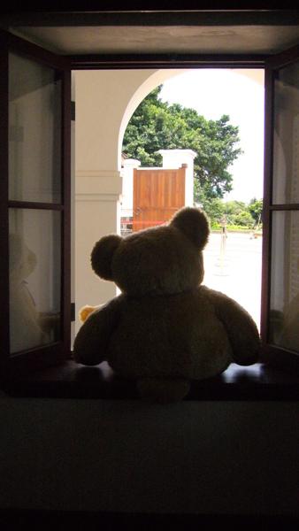大熊熊的背影
