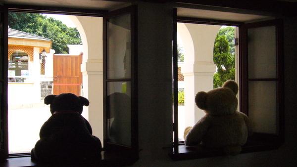 大熊熊的背影x2
