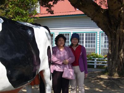 媽跟二姐合照--大家都搶著跟飛牛牧場的招牌拍照