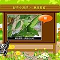 蝴蝶介紹-卵期.jpg