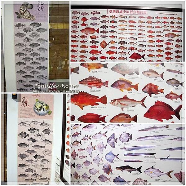 魚圖.jpg