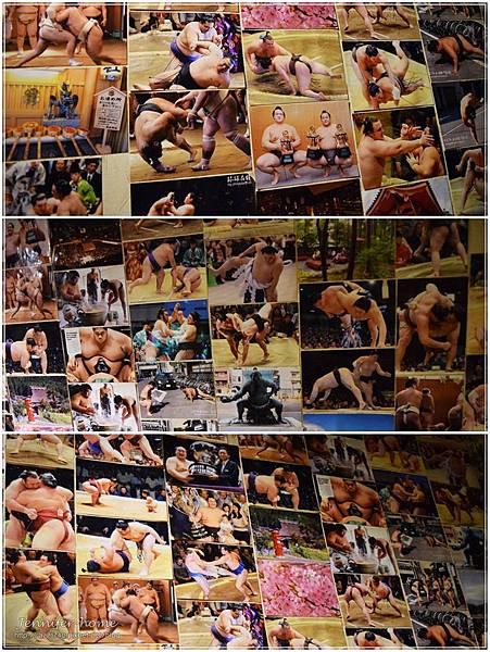 10 相撲照