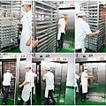 15烘烤區