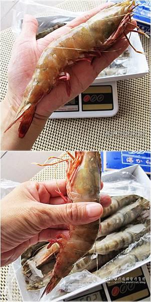 05蝦子夠大