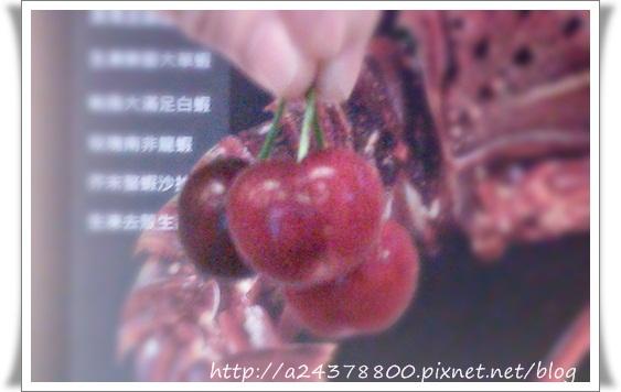 IMAG0084.jpg