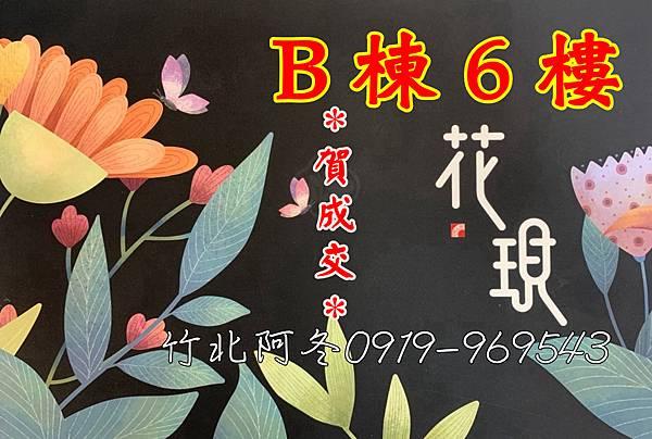 椰林花現封面B6.jpg