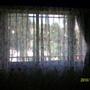 傳統窗簾布+紗