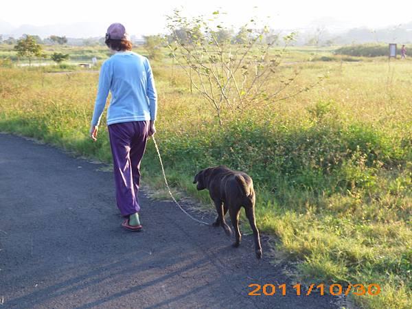 ㄧ早媽帶小黑散步.JPG