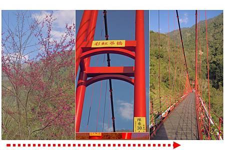 彩虹吊橋.jpg
