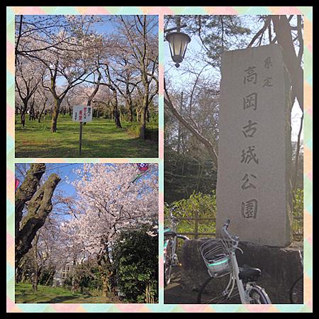 高岡古城公園.png