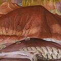 喬治亞.歐姬芙 紅土丘與骨骸 1941 油彩、畫布