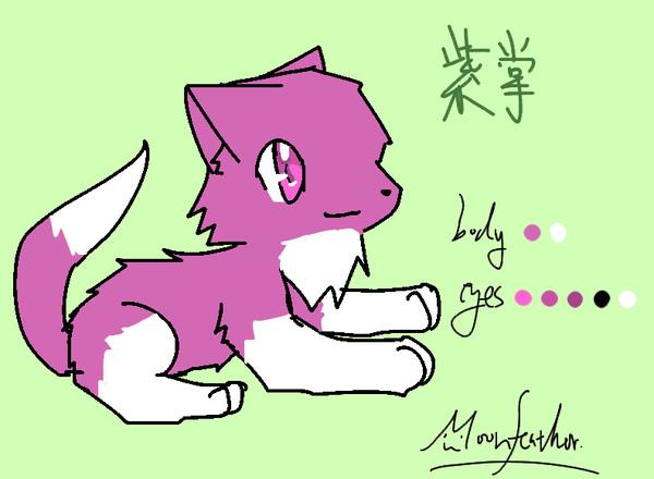 紫掌.jpg