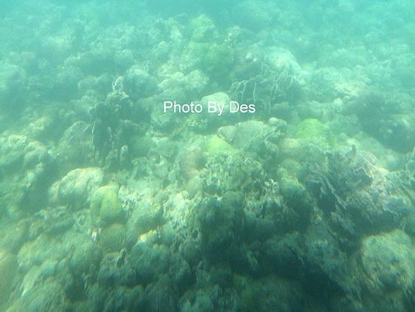 SEA_12.JPG