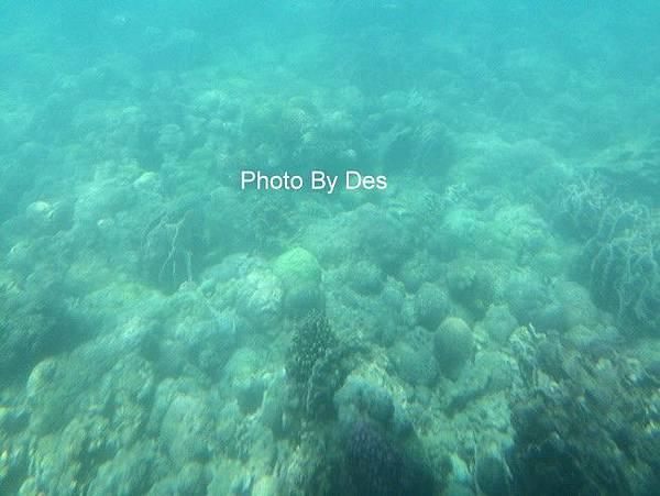 SEA_13.JPG