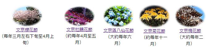 五大花節.jpg