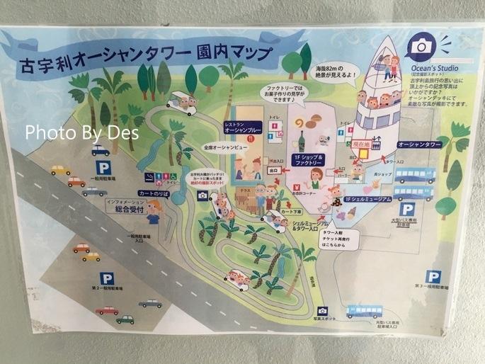 Kouri_05_1.JPG