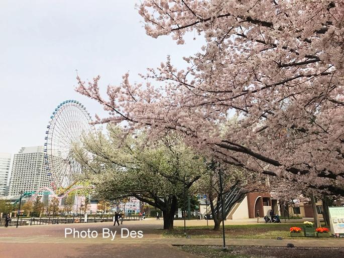 Yokohama_06.JPG