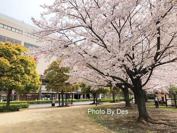 Yokohama_08.JPG