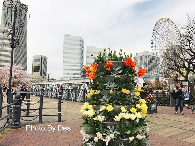 Yokohama_14.JPG