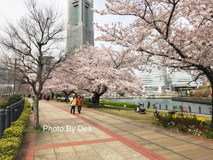 Yokohama_18.JPG