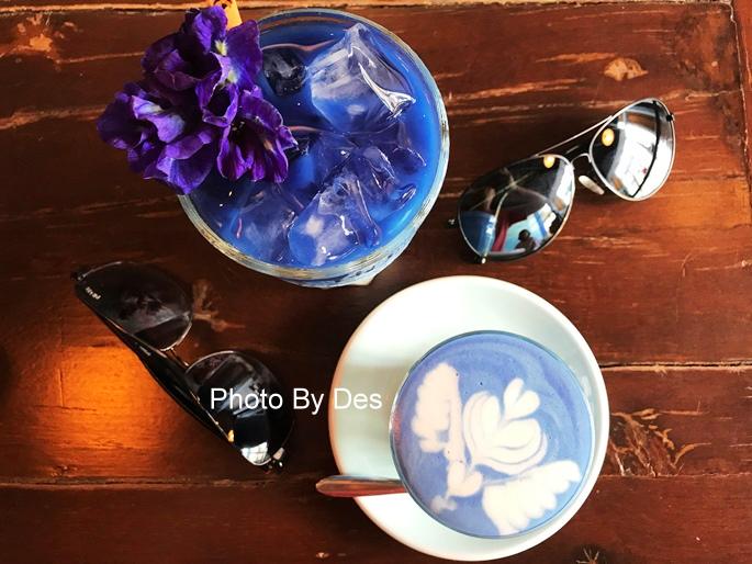 BlueWhale_01.JPG