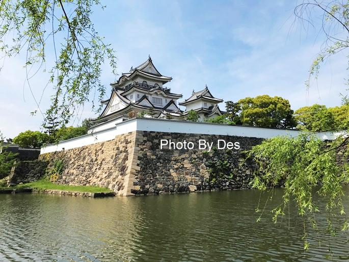 Kishiwada_14_1.JPG