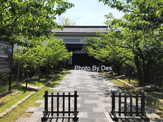 Kishiwada_15.JPG