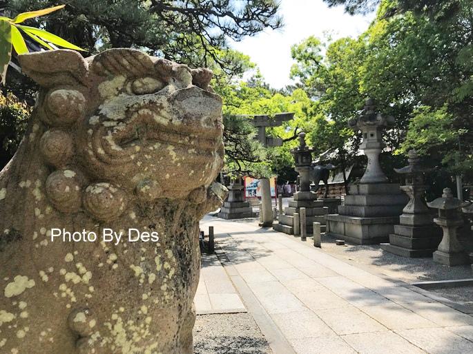 Kishiwada_25.JPG