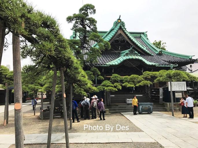 kimyo_36.JPG