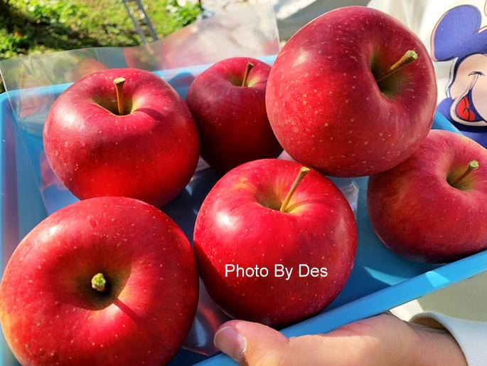 apple_16.JPG