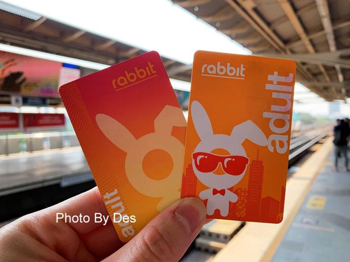 Rabbit_08.JPG