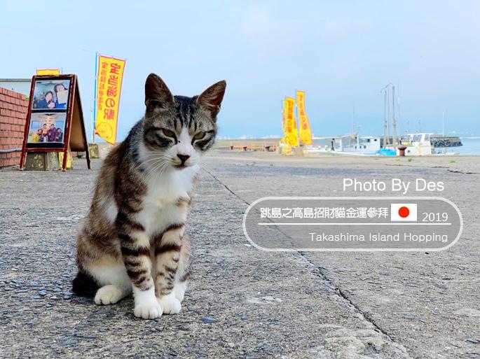 Takashima_00.jpg