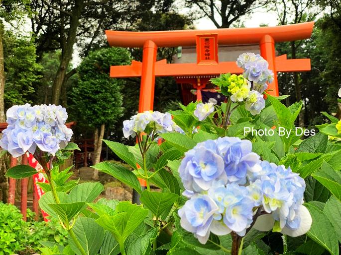 yutokusan_48.JPG