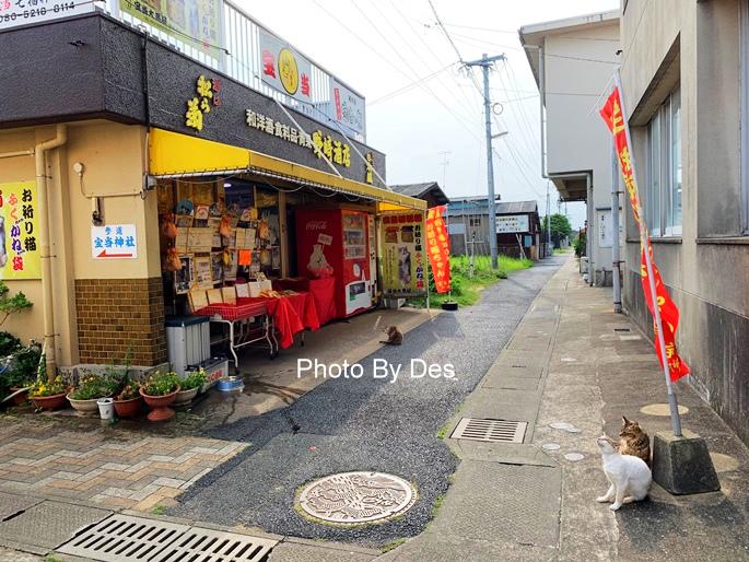 Takashima_20.JPG