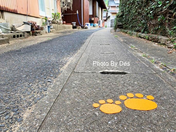 Takashima_27.JPG