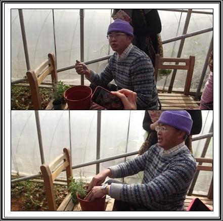 陽明山---時光香草花卉農園、川湯溫泉