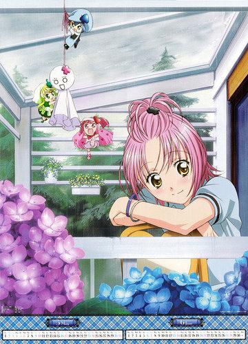 2009年守護甜心月曆5月~6月.jpg