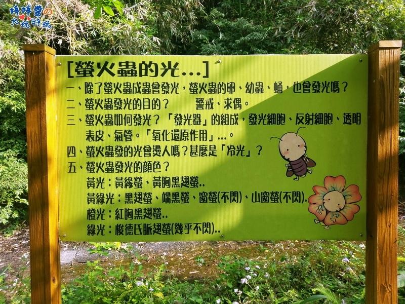 苗栗岩川森林民宿莊園餐廳看板螢火蟲的光介紹