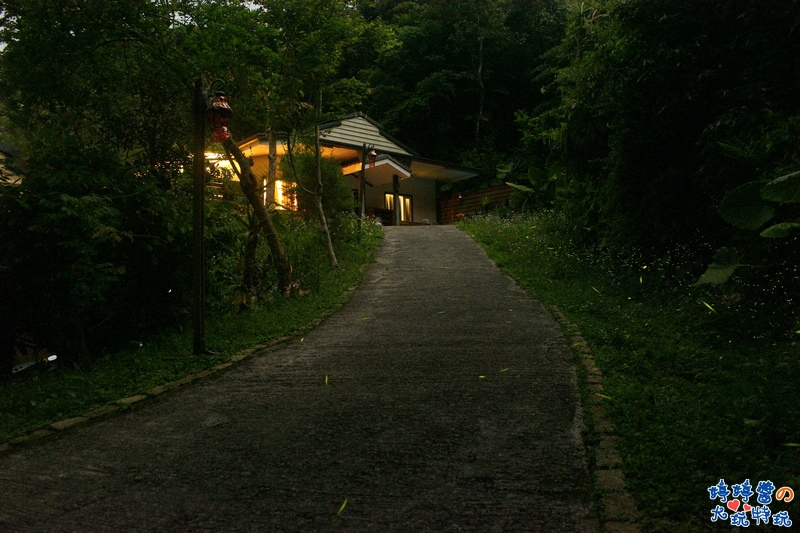 苗栗岩川森林民宿莊園餐廳螢火蟲攝影