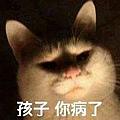 貓(表情)-02.jpg