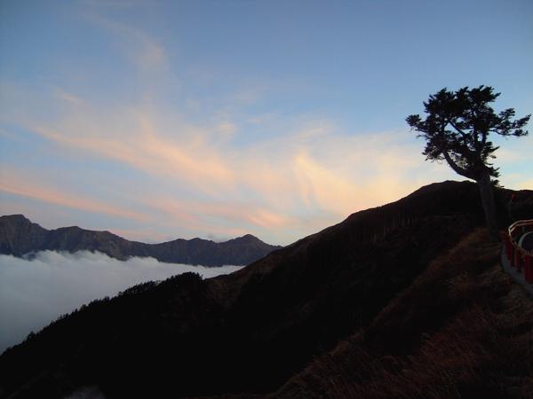 照片 合歡山雲海2.JPG