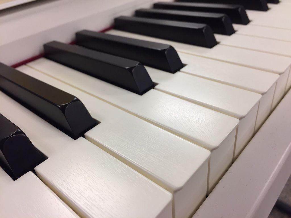 FP30琴鍵.jpg