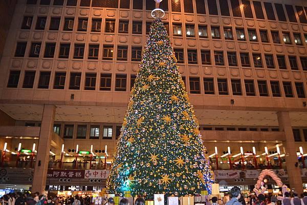 聖誕樹11