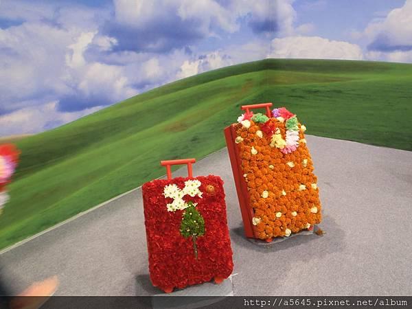 跟著花兒去旅行