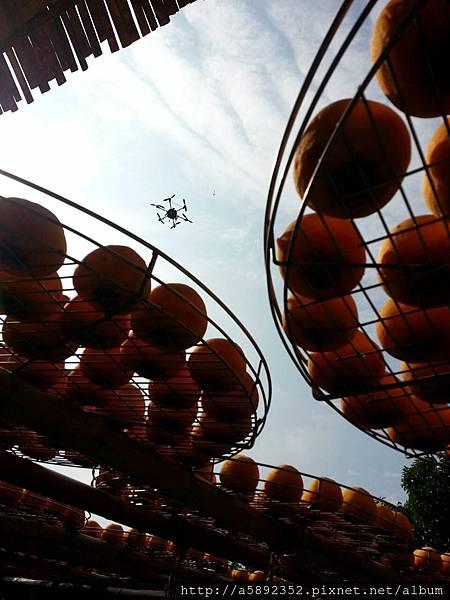 """攝影界最夯的""""空拍、空中攝影"""" — 在味衛佳柿餅觀光農場8"""