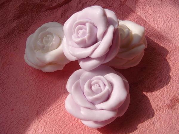 小玫瑰2.JPG